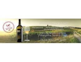 Дегустация вина из сорта винограда Фалангина